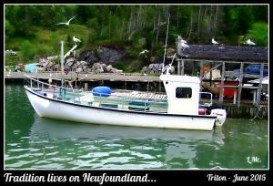 boat in triton