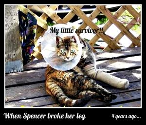 spencers broken leg